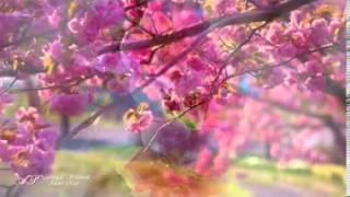 10 دقائق رائعة مع موسيقى أجمل أغاني فيروز + مناظر ساحرة HD
