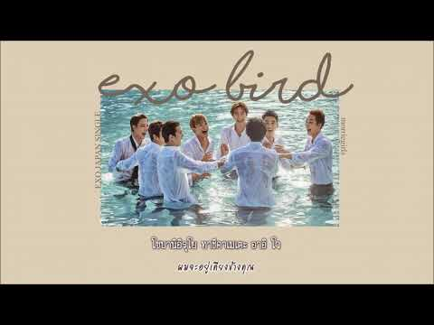 [Thaisub] EXO - Bird