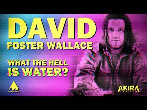 David Foster Wallace - WHAT THE HELL IS WATER? | Meaningwave MV | Akira The Don