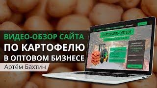 Учимся вместе создавать продающий landing-page по опту картофеля   Артём Бахтин