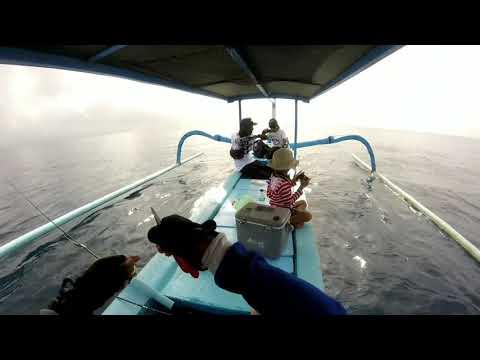 Lure Di Sambar Para Begal Laut Dangkal