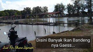 Mencari Spot Mancing di Kenjeran Surabaya  Mancing Liar