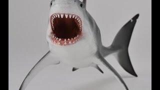 Коллекция морских животных. Акулы, скаты, киты. Collection of marine animals. Sharks, rays, whales