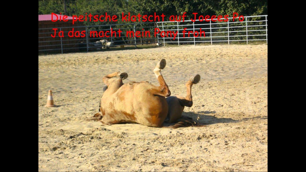 Ich Und Mein Pony Sein Name Ist Joeeee D Youtube