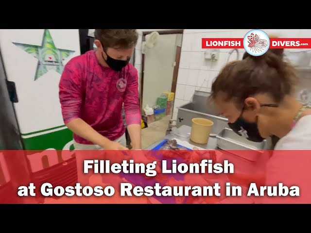 Filleting Lionfish at Gostoso Restaurant in Aruba