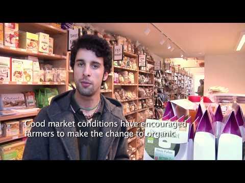 Organic market in Denmark