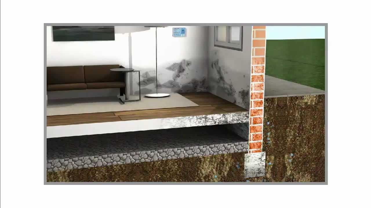 Umidit di risalita domodry la elimina video - Come eliminare l umidita in casa ...
