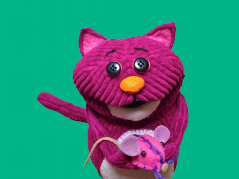 Corduroy Cat Vine Compilation 2015
