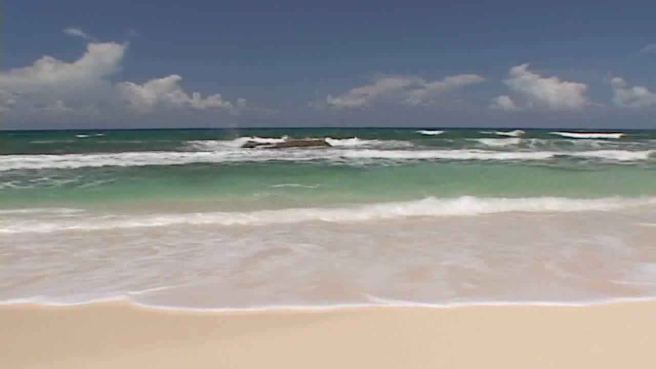 Tropical Island Beach Ambience Sound: بدون موسيقى للاسترخاء