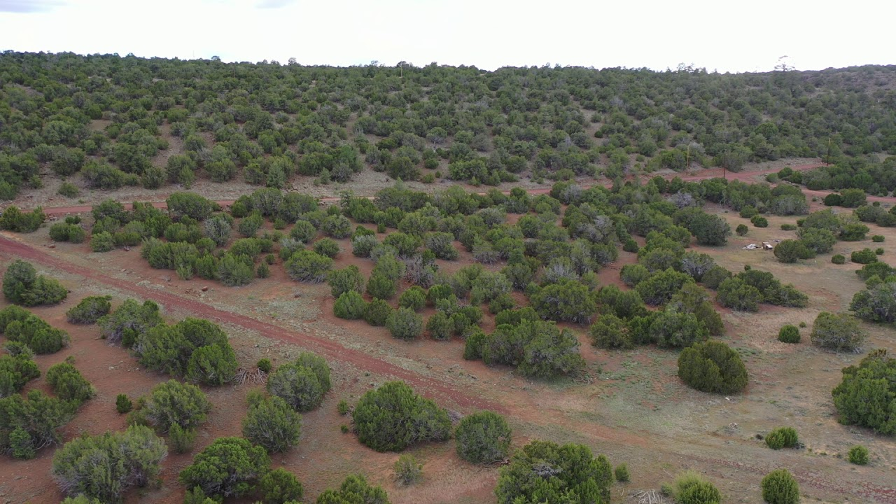 Sold by Compass Land USA - Apache County, Arizona - Parcel 107-34-308