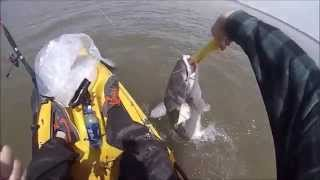 Kayak Fishing Kansas: Milford Lake Blue Catfish
