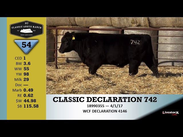Classic Angus Ranch Lot 54
