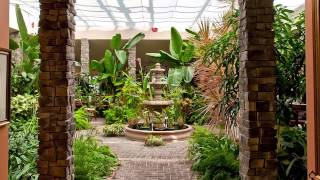 Garden Atrium Short Version YouTube Videos