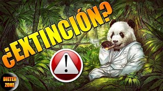 Video 9 animales en peligro de extinción. ¿Lo sabías? download MP3, 3GP, MP4, WEBM, AVI, FLV Oktober 2018