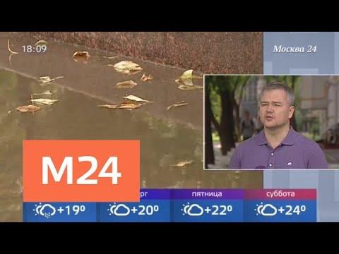 Пасмурная погода сохранится до позднего вечера в Москве 21 августа - Москва 24