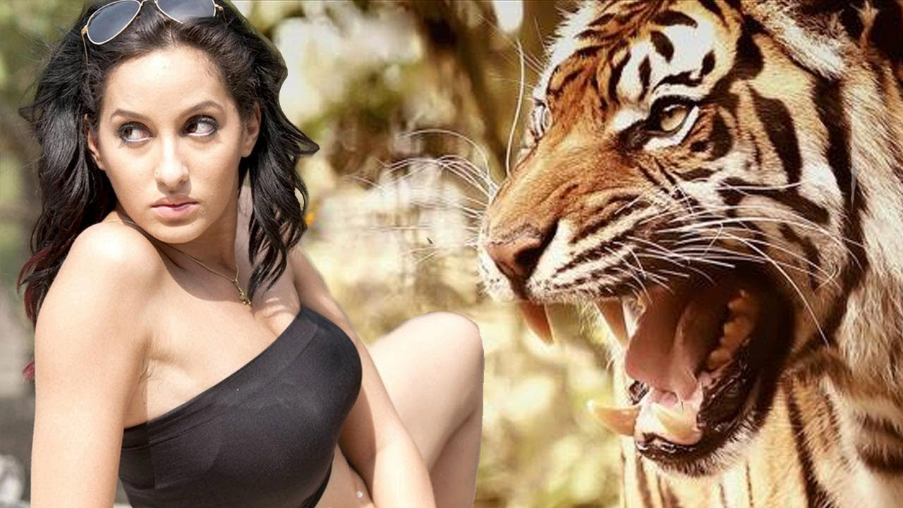 Download Roar Tigers Of The Sundarbans Full HD movie - Nora fatehi new superhit movie