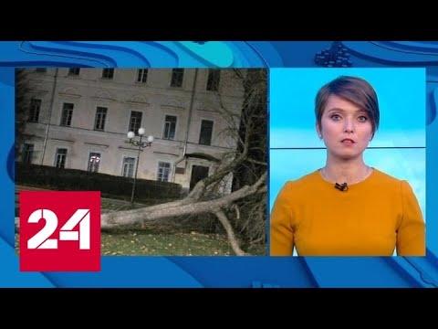 """""""Погода 24"""": штормовой ветер уходит на восток - Россия 24"""