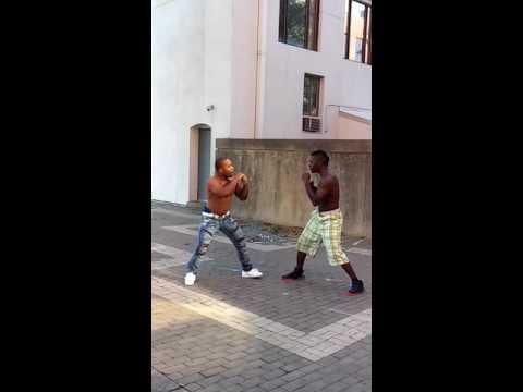 Winston salem fight
