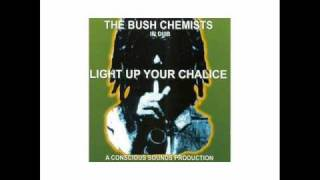 Bush Chemists - Positive Movement