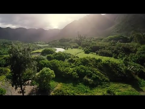 Hawaii at the Environmental Crossroads
