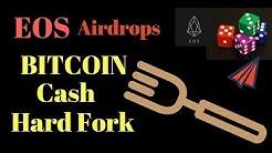 Bitcoin Cash Hard Fork Bitcoin SV   Binance Coinbase Support Hard Fork   EOS is not a blockchain?