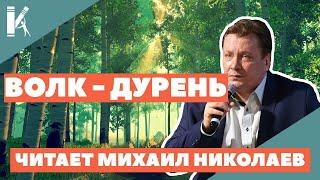 Артист театра и кино Михаил Николаев читает сказку ВОЛК - ДУРЕНЬ
