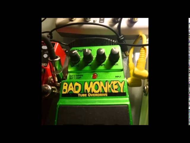 BASS SOLO Jimi Hendrix Are You Experienced BOSS LoopStation Digitech BAD MONKEY by gomakashiking