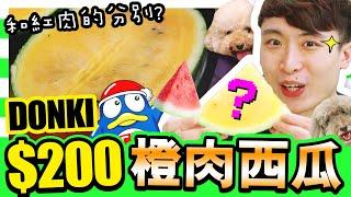 【💥再戰DONKI水果】$200「日本橙肉西瓜🍉」,😲味道竟然是這樣!?🧐驚安殿堂買的和紅肉西瓜的分別是...?(中字)