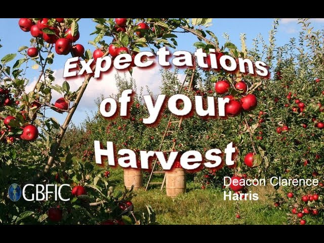 Expectations of your Harvest - Deacon Clarence Harris