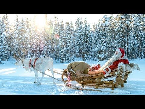 Babbo Natale per bambini: I segreti delle renne di Santa Claus in Lapponia Finlandia Rovaniemi