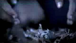 The Devil Wears Prada - Hey John Whats You're Name Again(mv)