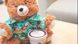 Pebbles the Bear enjoys some Cornish Ice Cream