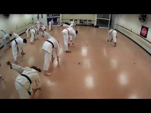 Karate Class all ranks 10 26 18