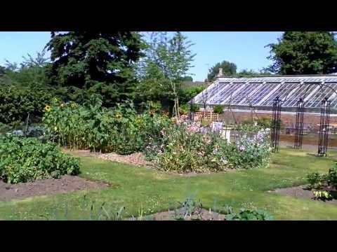 kitchen garden (wightwick manor and gardens)