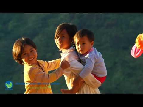 Công ty Cổ phần Dược liệu Việt Nam - VietMec
