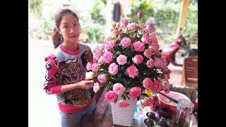 Cách cắm hoa- Cắm hoa hồng thế này để bàn ngày tết rực rỡ lắm à