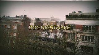 Jack Stauber - Dog Nightmare (sub español/lyrics)