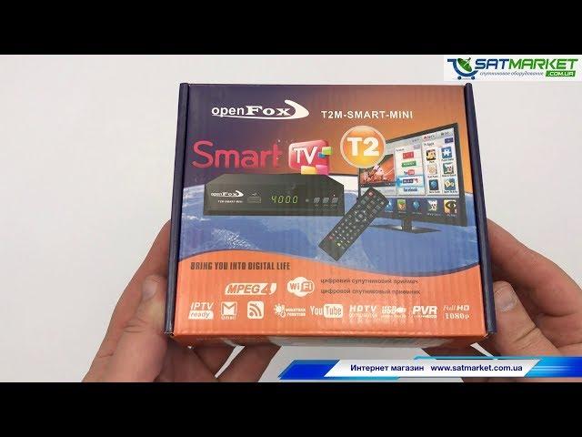 Видео обзор Open Fox T2M SMART MINI