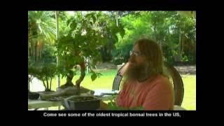 The Redland Tropical Trail