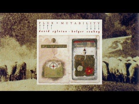 David Sylvian & Holger Czukay / Flux & Mutability (Full Album)