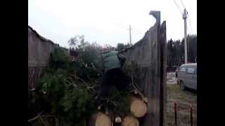 видео Услуги уборки дачных участков, уход за садом в Москве и области