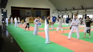 Тренировка (лапы и спарринг) в старшей группе