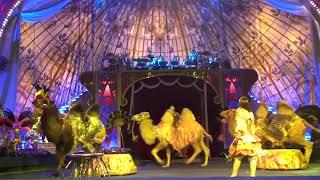 В гостях у шейха. Королевское шоу Гии Эpaдзe 5 континентов