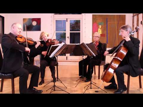 Fly Me To The Moon || Oakwood String Quartet