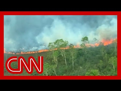 Flying above the Amazon fires: 'All you can see is death'