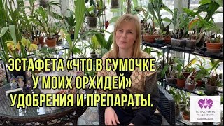 Эстафета «Что в сумочке у моих орхидей» удобрения и препараты