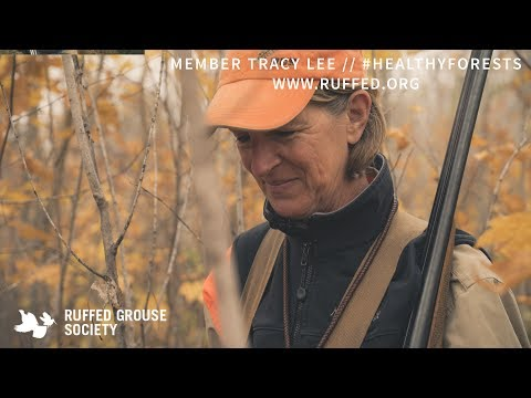 Woodcock Hunting The Forest Of Minnesota // #HealthyForests Campaign // Ruffed Grouse Society