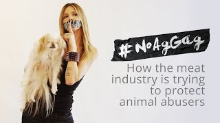 #NoAgGag - Join the movement!