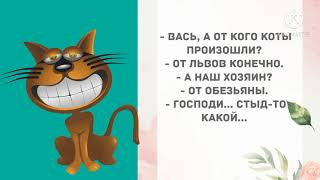 Иван признался что изменил жене Прикольные анекдоты дня