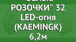 Гирлянда БЕЛЫЕ РОЗОЧКИ 32 LED-огня (KAEMINGK) 6,2м обзор 482119 производитель KAEMINGK (Нидерланды)